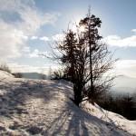 Tannschach im Winter