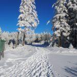Althofdrachen - Dreikönigswanderung 2017