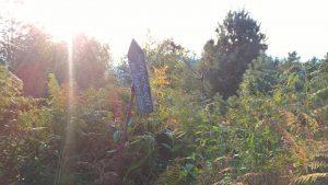 Althofdrachen - Aussicht vom Startplatz